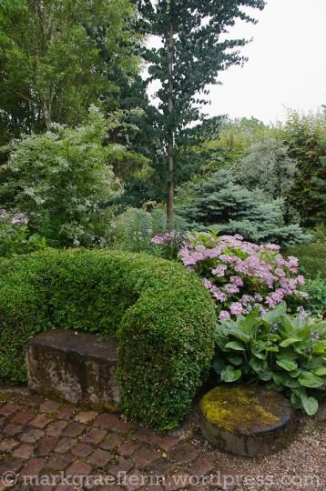 Garten Marguerite65