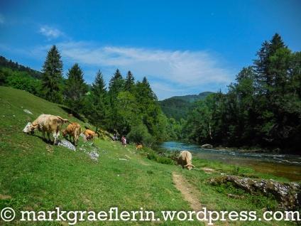 Doubs Wanderung 7