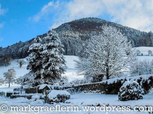 Muenstertal Schnee 01_2017_8