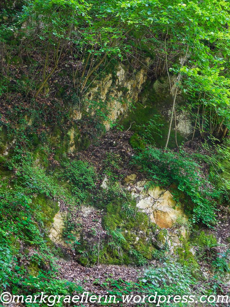 Wanderung Niederweiler_Burg Neuenfels 15